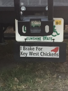 breakforchickens